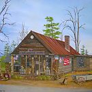 Old Sautee Store, Georgia by Vivian Eagleson