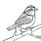 White-throated sparrow detail, coloring book page by Gwenn Seemel