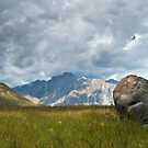The boulder by Roberto Bettacchi