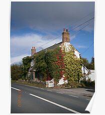 Ivy Cottage Poster