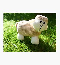 Hand Knitted toy Sheep Photographic Print