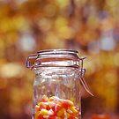 Autumn Treat by EkaterinaLa