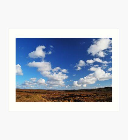 in between peatland & deep sky Art Print