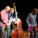 Medeski,Martin and Wood--Sherman Theather  by Imagery