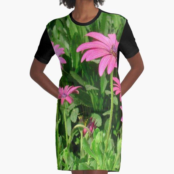 Magenta Africa Daisies Graphic T-Shirt Dress