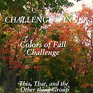 Challenge Winner - Colors of Fall by quiltmaker