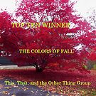top Ten - Colors of Fall by quiltmaker