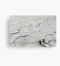 Winter Hike Metal Print