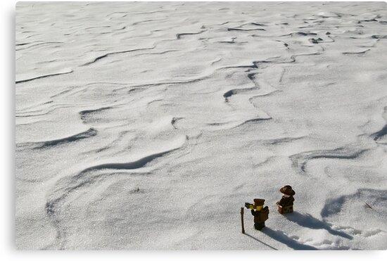 Winter Hike by Dan Phelps