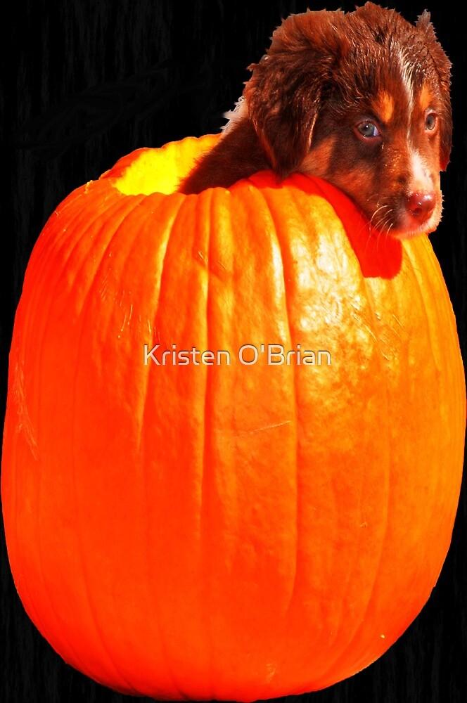 Puppy in a Pumpkin! by Kristen O'Brian