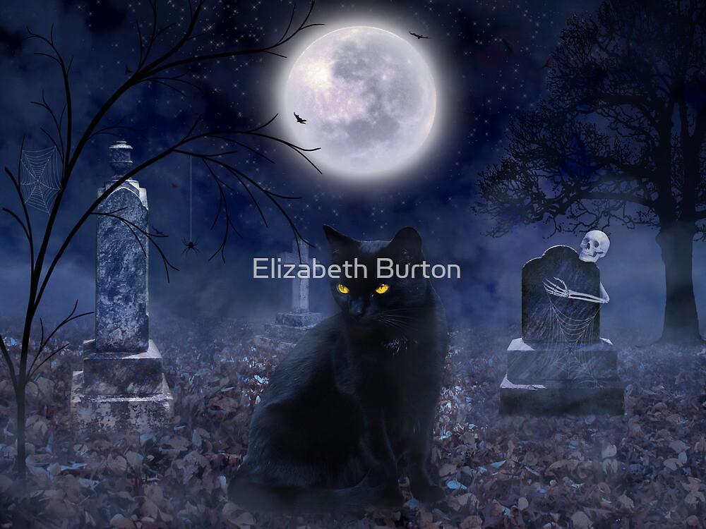 The Familiar by Elizabeth Burton