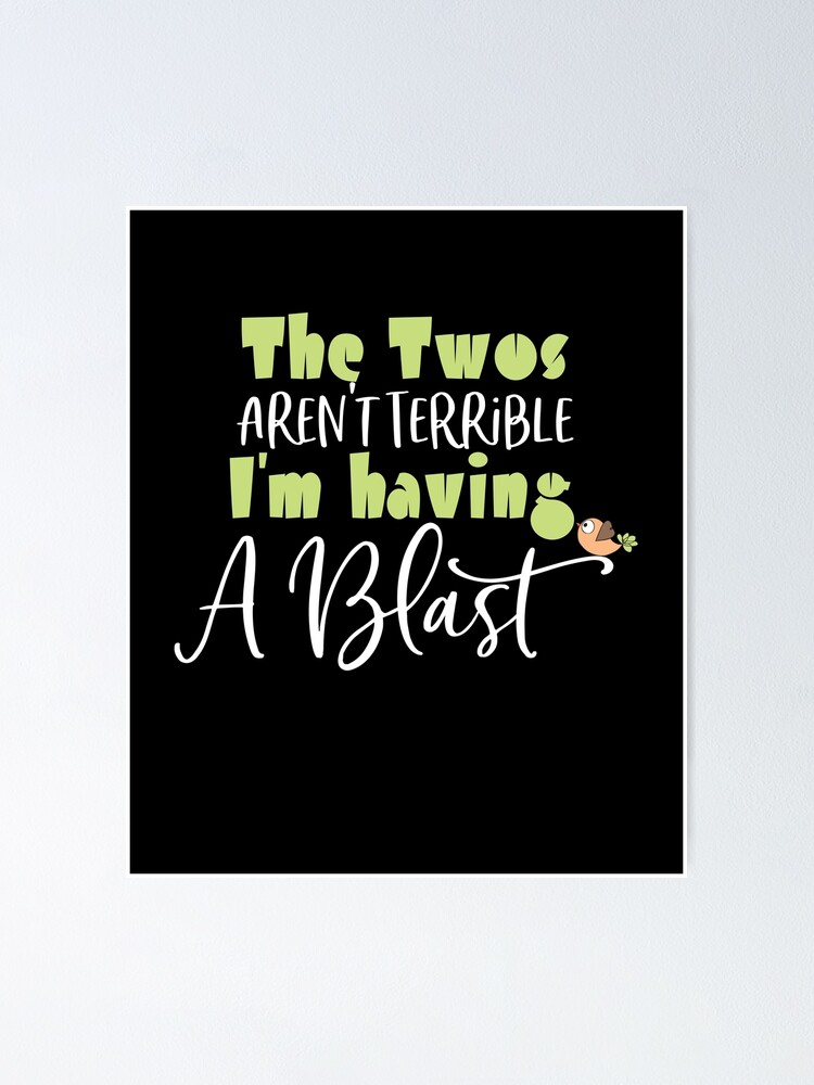 Second Birthday Girl Or Boy The Twos Aren T Terrible I M Having Blast Poster By Akmloza Redbubble