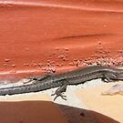 Friendly Lizard by Russell Voigt