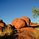 Devil's Marbles by Dilshara Hill