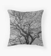 Biddulph Country Park, Trees Throw Pillow