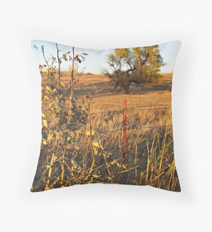 Out Standing in the Field Throw Pillow