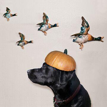 Halloween Dog with Flying Ducks by heatherbuckley