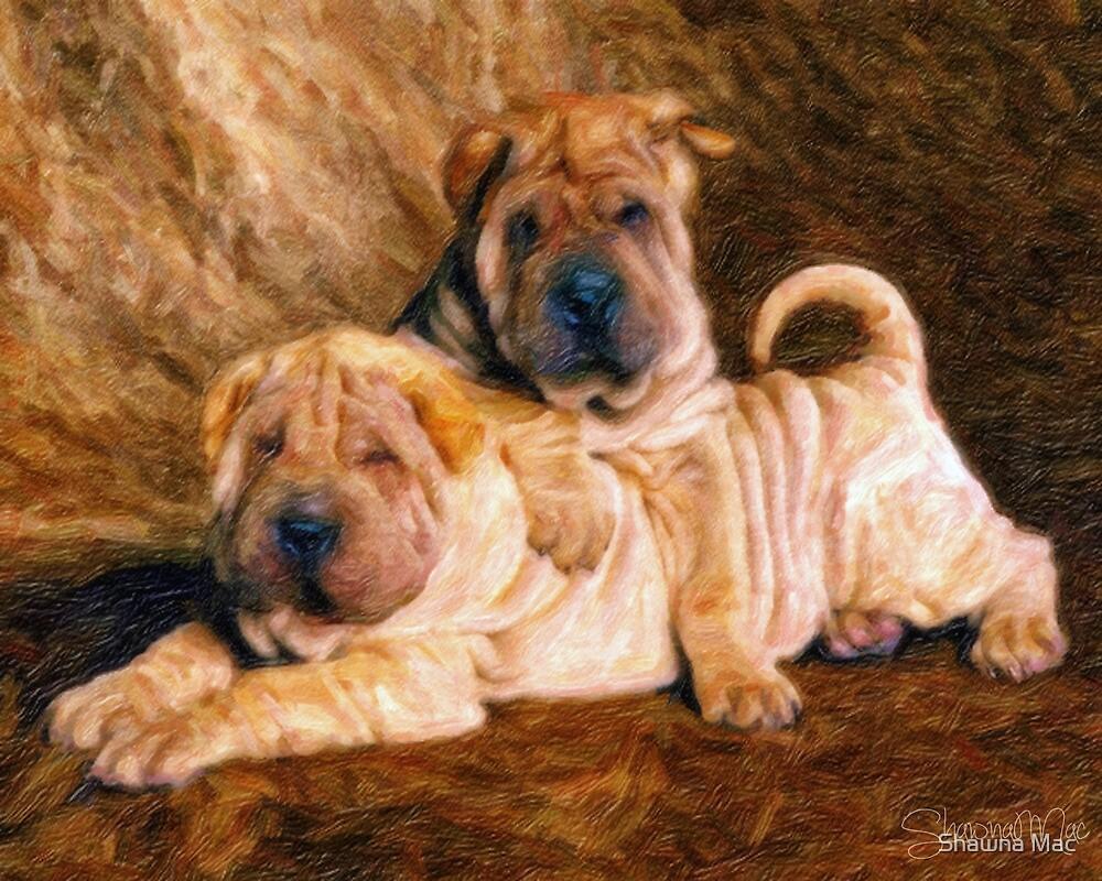 Sharpei Dogs in Impasto by Shawna Mac