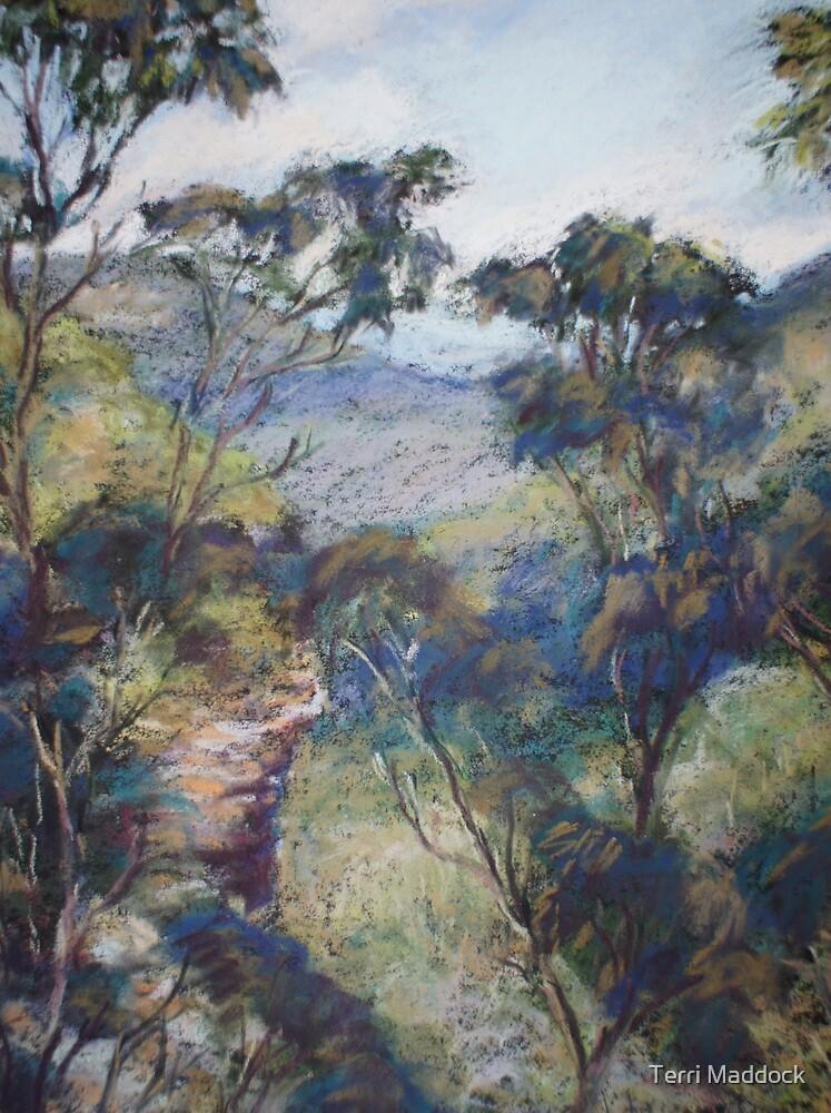 Leura - Prince Henry cliff walk by Terri Maddock