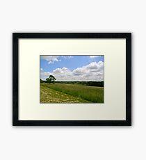 Field Framed Print