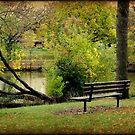 Serenity © by Dawn Becker