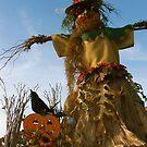 PraireWind Scarecrow by evon ski