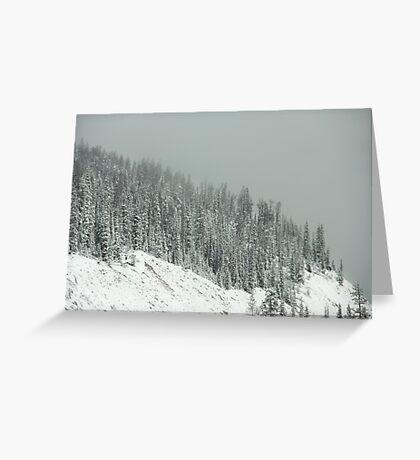 Winter's Veil Greeting Card