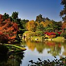 Colors of Fall by kentuckyblueman