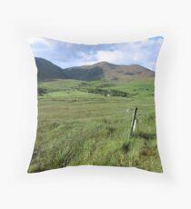 green fields of ireland Throw Pillow