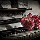 THE PIANO by SHAZZ