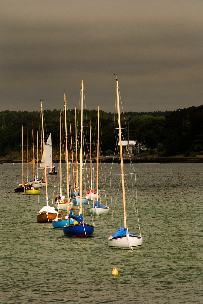 Sailing boats moored for the evening by David Wheeldon