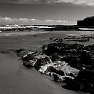 Old Hartlepool Shoreline 002 by Paul Berry