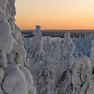 Snowscape by Henry Moilanen