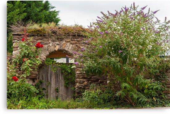 Krems: A Door To ... by Jacinthe Brault