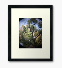 Photo 2.3: Yggdrasil Framed Print