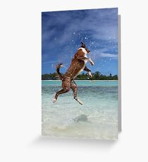 MCC It's a dog's life! Greeting Card