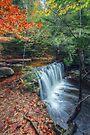 Oneida Falls October 2012 by Aaron Campbell