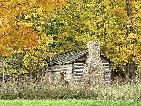 Cabin on the Farm by Monnie Ryan