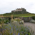 Lindisfarne Castle view from Gertrude Jekyll garden by BronReid