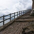 Lindisfarne Castle, a doddle for mountain goats by BronReid