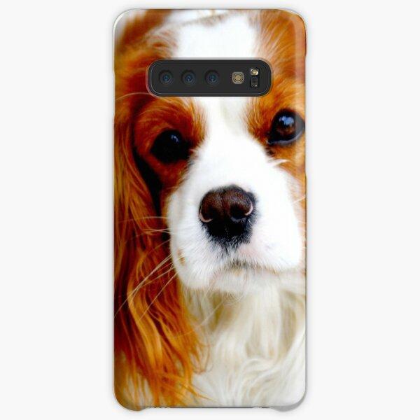 Cavalier King Charles Spaniel  Samsung Galaxy Snap Case