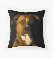 YES CAPTAIN !!!! Throw Pillow