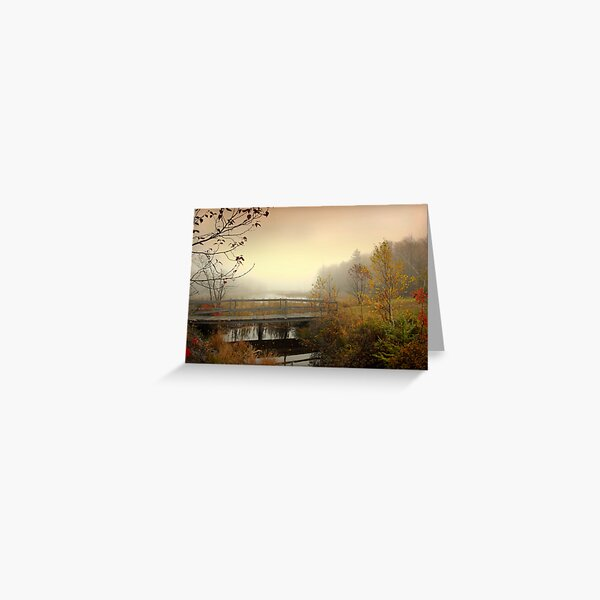 Quiet Moments Greeting Card