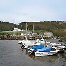Axmouth Harbour by brucemlong