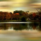Evening Sets In © by Dawn Becker