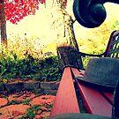 Oxford, MI | Autumn 8 by RJ Balde