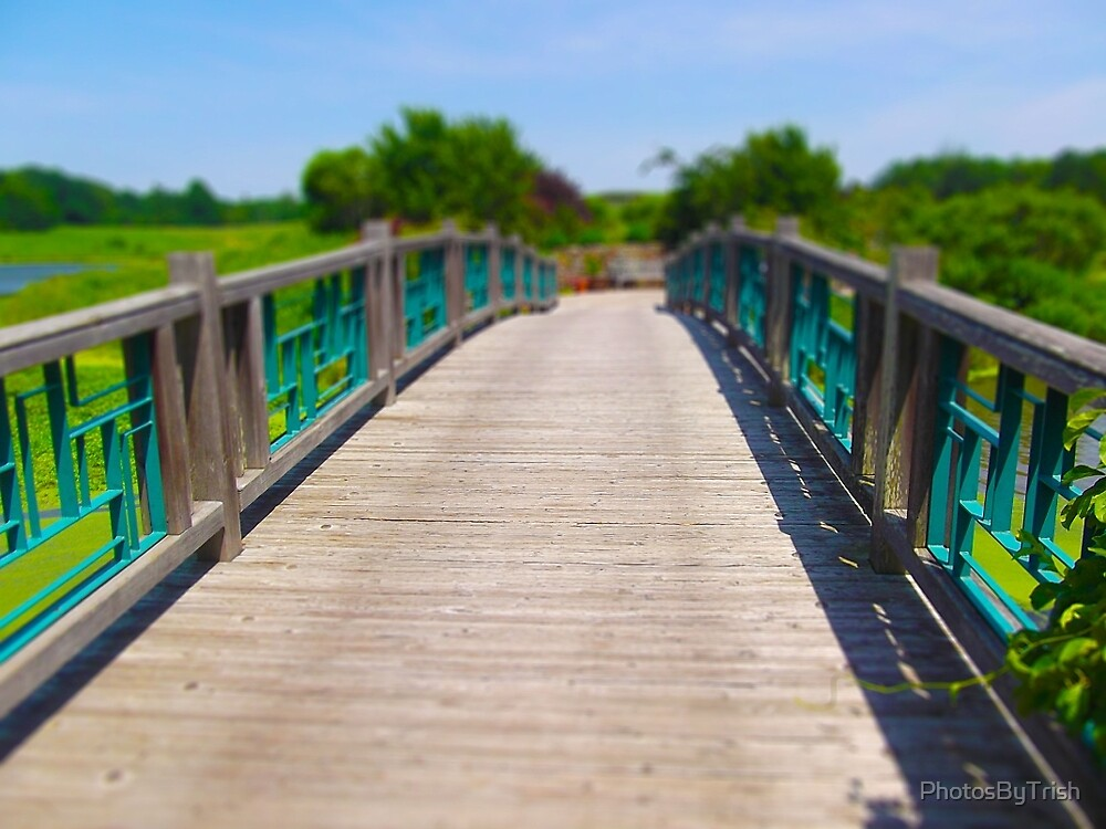 Pedestrian Bridge Tilt Shift, Powell Gardens by PhotosByTrish