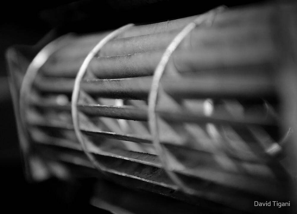 Blades by David Tigani