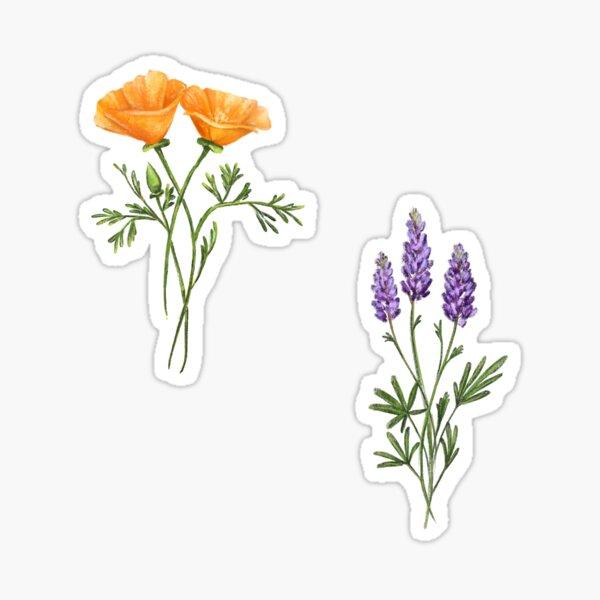 West Coast Wildflowers, Stickerpack Sticker
