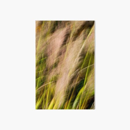 Pampas Grass Abstract Blur Art Board Print
